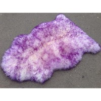 SHEEP 4019 PURPLE
